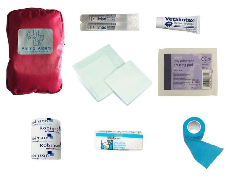 Cat Pink Basic First Aid Kit