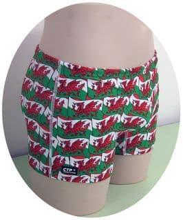 Welsh Dragon Swim Trunks