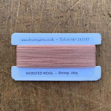 2819 Shrimp - Worsted Wool - Embroidery Thread