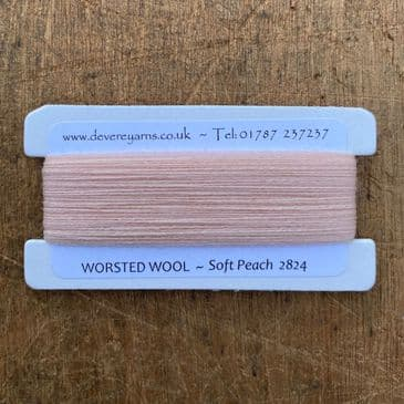2824 Soft Peach - Worsted Wool - Embroidery Thread