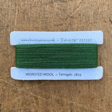 2829 Terrapin - Worsted Wool - Embroidery Thread