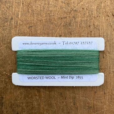 2855 Mint Dip Dyed - Worsted Wool - Embroidery Thread