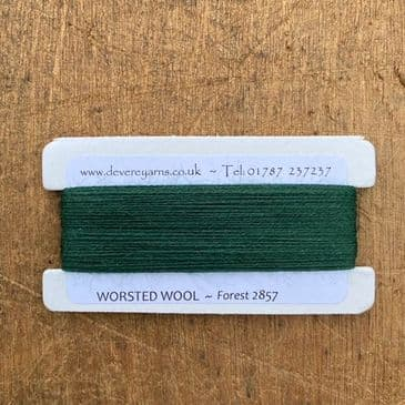 2857 Forest - Worsted Wool - Embroidery Thread