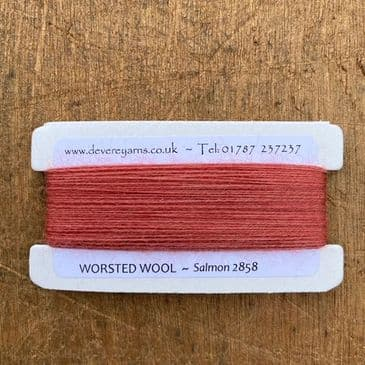 2858 Salmon - Worsted Wool - Embroidery Thread