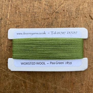 2859 Pea Green - Worsted Wool - Embroidery Thread