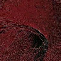 60/66 Pure Silk Organzine - Red Dark Red