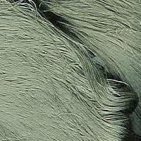 60/66 Pure Silk Organzine - Sage Green