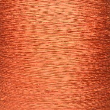 Salmon - 120 gram cone
