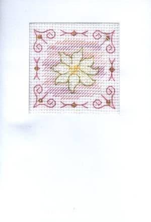 Pink Daisy Card Ref No. CA150231