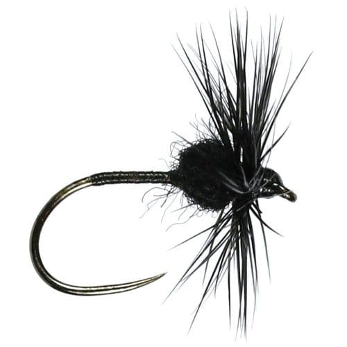 BLACK SPIDER HACKLED DRY - CALEDONIA