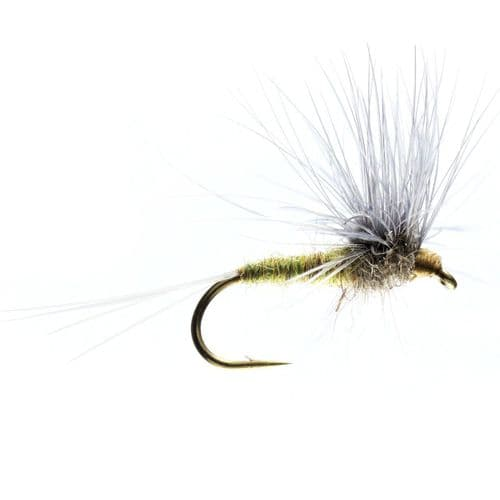 BLUE WINGED OLIVE STACKED HACKLE - CALEDONIA