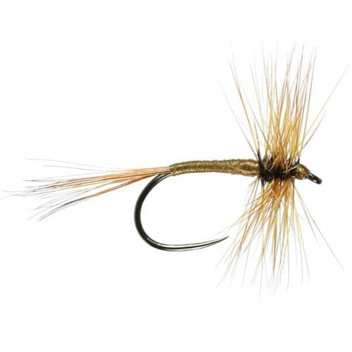 DARK OLIVE BARBLESS HACKLED DRY - CALEDONIA