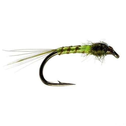 OLIVE QUILL/GREEN FB BUZZER - CALEDONIA