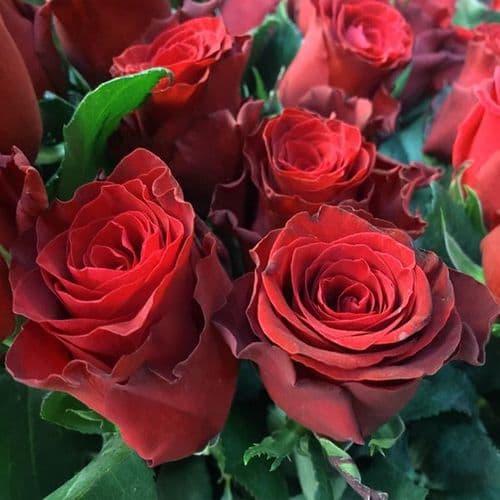 Μπουκετο με 10 κοκκινα τριανταφυλλα
