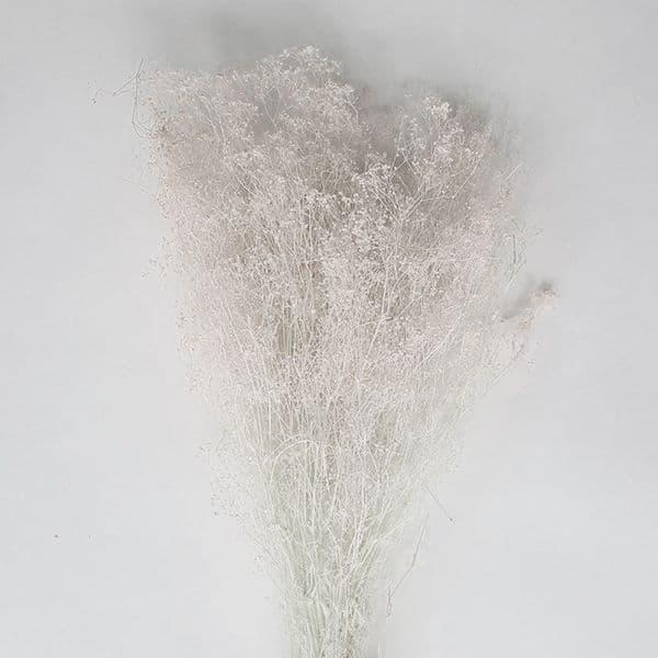 ΚΕΡΩΜΕΝΗ ΑΣΠΡΗ  ΓΥΨΟΦΙΛΛΗ  / PRESERVED WHITE GYPSOPHILA
