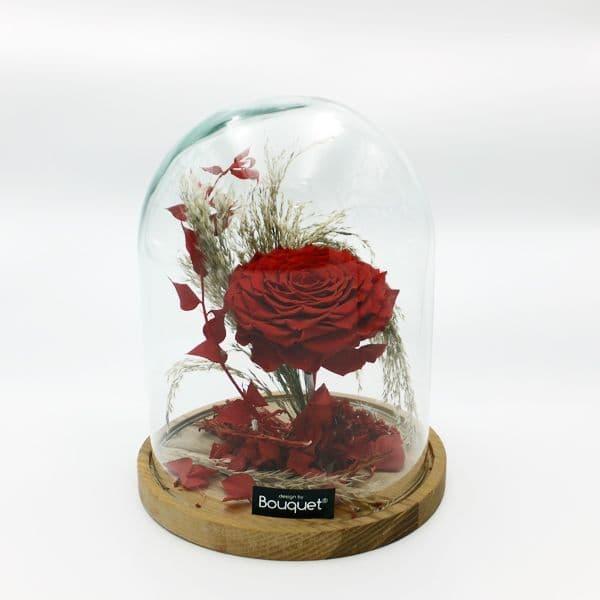 A FOREVER 100 PETAL ROSE  / Ενα ΔΙΑΤΗΤΗΜΕΝΟ ΕΚΑΤΟΝΤΑΦΥΛΛΟ ΤΡΙΑΝΤΑΦΥΛΛΟ