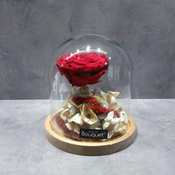 A FOREVER ROSE in a dome / ενα ΔΙΑΤΗΤΗΜΕΝο ΤΡΙΑΝΤΑΦΥΛΛο μεσα σε θολωτή γυάλα