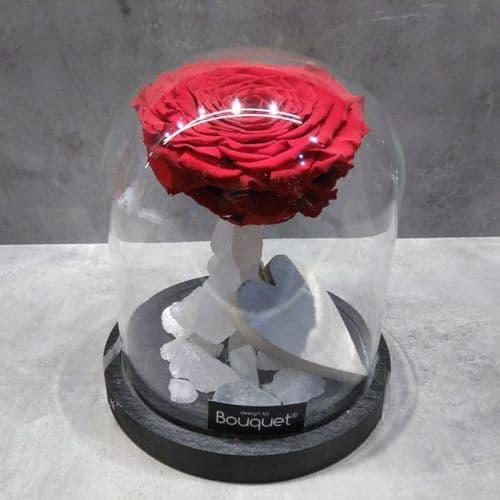 A FOREVER ROSE in a glass dome / Ενα ΔΙΑΤΗΤΗΜΕΝΟ ΤΡΙΑΝΤΑΦΥΛΛΟ μεσα σε θολωτή γυάλα