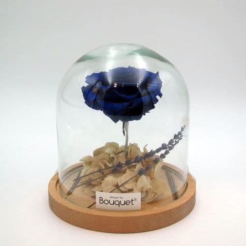 a FOREVER ROSE in a glass vase / ενα ΔΙΑΤΗΤΗΜΕΝο ΤΡΙΑΝΤΑΦΥΛΛΑ μεσα σε γυάλα
