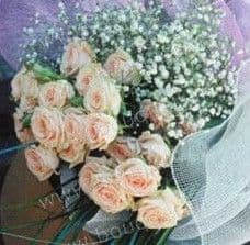 Bouquet of pink spray roses and baby's breath