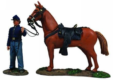 WB31269 Federal Orderly Holding Horse