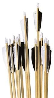 12 Hand Made Spined POC Wooden Arrows