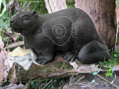SRT Beaver