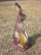 SRT Hare