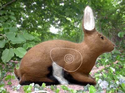 SRT Rabbit
