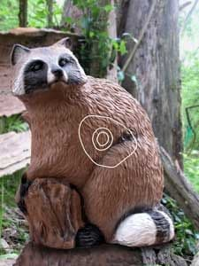 SRT Raccoon