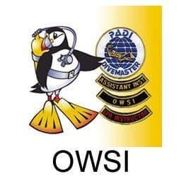 IDC - OWSI