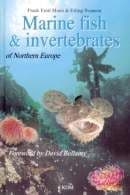PDC 70 BOOK MARINE FISH & INVERTEBRATES