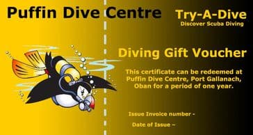 PDC DIVING GIFT VOUCHER <BR> BOOK  A  TRY-A-DIVE