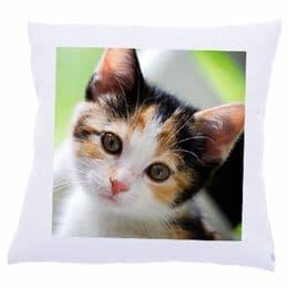 Personalised Photo Cushion Velvet Single or Double Side