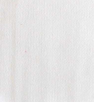 8250 White - Heavy Cotton Single Jersey